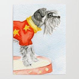 Starry Scruffy Schnauzer Poster