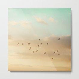 Flock of Seventeen Metal Print