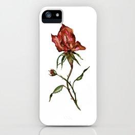 Loose Watercolor Rosebuds iPhone Case