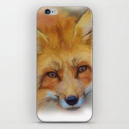 Fox in a close-up iPhone Skin