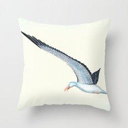 Toaroa in flight Throw Pillow