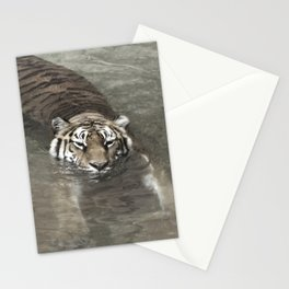 Tiger Lazing in the Water Stationery Cards
