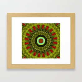 Lovely Healing Mandala  in Brilliant Colors: Olive, Green, Burnt Orange, Black, and Turquoise Framed Art Print