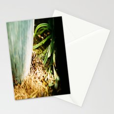 Another  View Stationery Cards