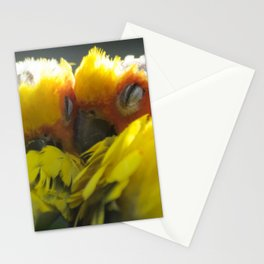 My Birdy Valentine Stationery Cards