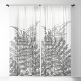 Charcoal Tree Fern Bottoms Up Sheer Curtain