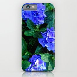 Three Hydrangea Blossoms iPhone Case