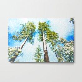 Snow in Sequoia National Park Metal Print