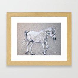 Arabian horse Framed Art Print