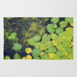Pond by Althéa Photo Rug