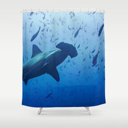 Hammerhead shark portrait Shower Curtain
