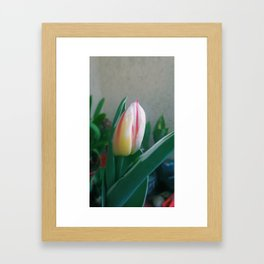 The NewBorn Framed Art Print