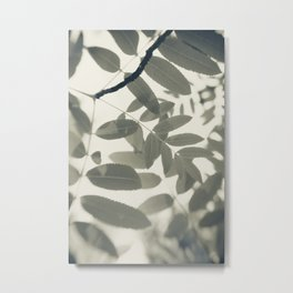 Light Green Forest Leaves Abstract Metal Print