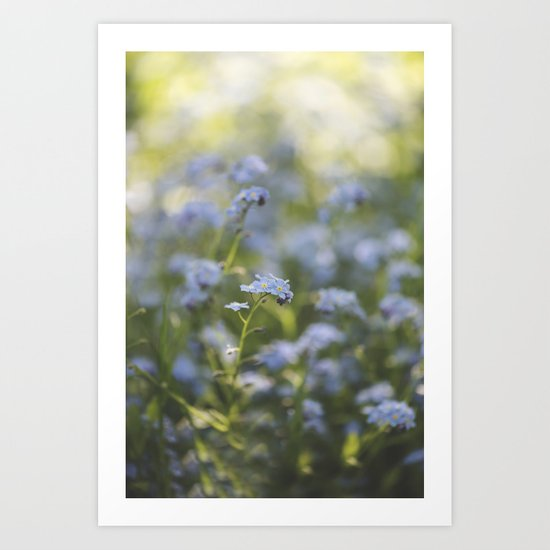 Forget-me-not meadow Spring Flower Flowers Floral on #Society6 Art Print