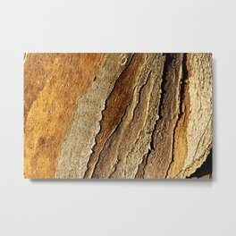 Eucalyptus Tree Bark and Wood Abstract Natural Texture 26 Metal Print