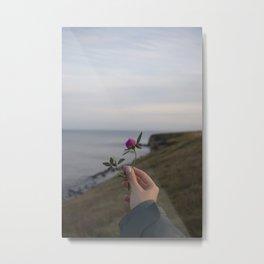 Flower in Seaham, United Kingdom Metal Print