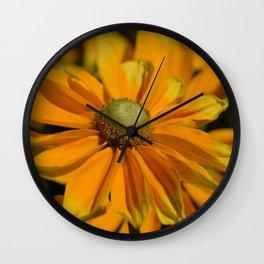 Sunshine in my Garden Wall Clock