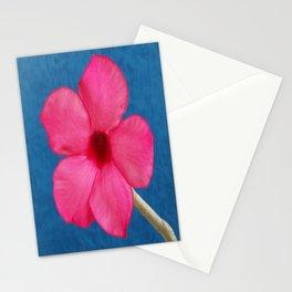 DELIGHTFULLY PINK Stationery Cards