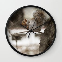 Squirrel Through the Screen Wall Clock