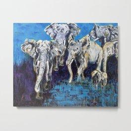 African Elephant  Family Metal Print