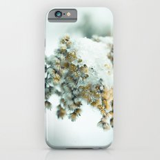 Frost & beauty Slim Case iPhone 6s