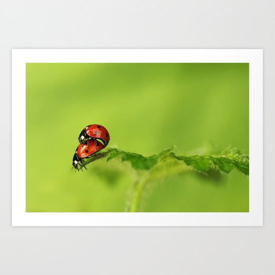 Ladybirds in spring Art Print