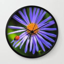 The runway of a ladybird Wall Clock