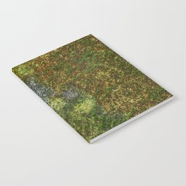 Old stone wall with moss Notebook