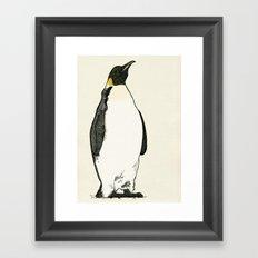 Emperor Penguin Framed Art Print
