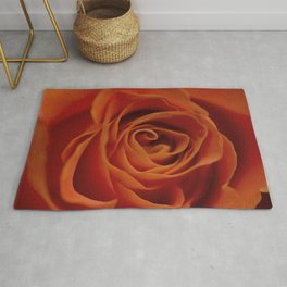Orange rose closeup Rug