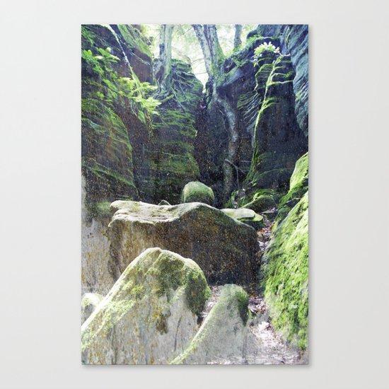 natura 3 Canvas Print