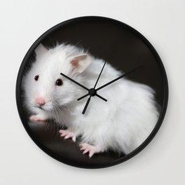 Teddy Bear Hamster Wall Clock