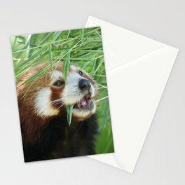 RedPanda_20150706_by_JAMFoto Stationery Cards