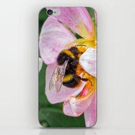 bee on pink flower iPhone Skin