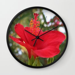 Soft Red Hibiscus With Natural Garden Background Wall Clock