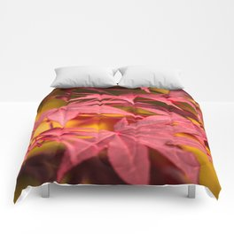 Autumn Maple Comforters