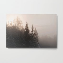 Mist | Nature and Landscape Photography Metal Print