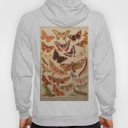 Vintage insects 1 Hoody