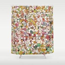 Aztec Vintage Pattern 10 Shower Curtain