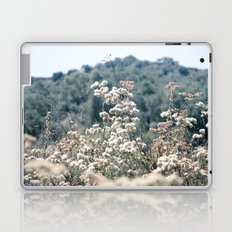 Buckwheat Afternoon Laptop & iPad Skin