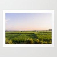 bali Art Prints featuring Bali by Mark Chou Photography