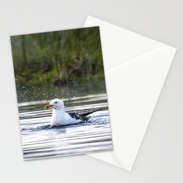 Gull bathing and showering Stationery Cards