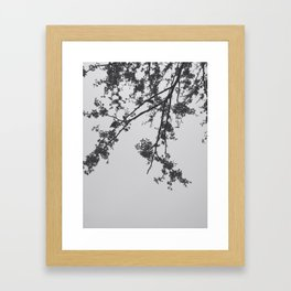 La Flor Framed Art Print