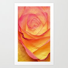 Colourful Rosie Art Print