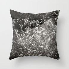 Catching the light Throw Pillow