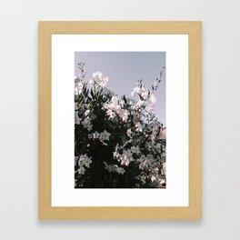 White Flowers Framed Art Print