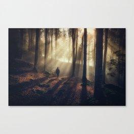 My element Canvas Print