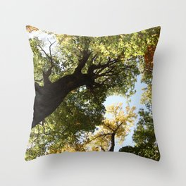 Fall Canopy - Woodland Trees Throw Pillow
