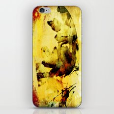 Burned colors iPhone & iPod Skin