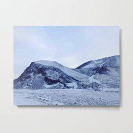 ICE Twins Metal Print
